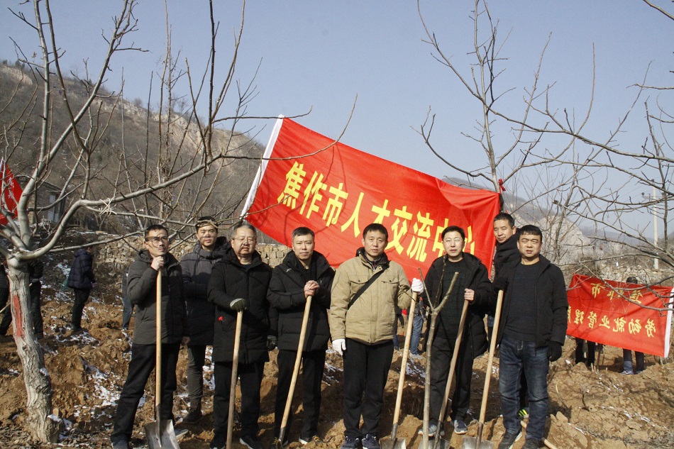 市人才交流中心组织参加全市年义务植树活动